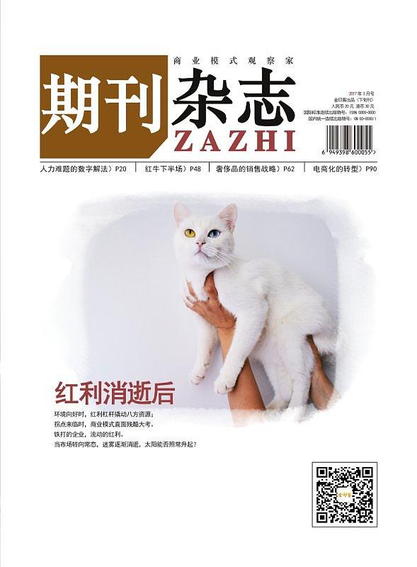 商业期刊杂志模板