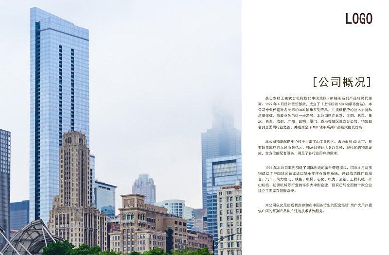 白色商务产品宣传画册企业简介