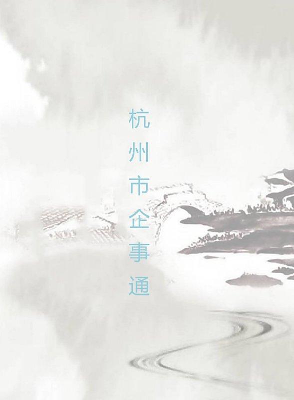 中国风企业软件介绍画册